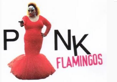 PinkFlamingos1